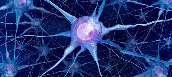 neurologia-roma